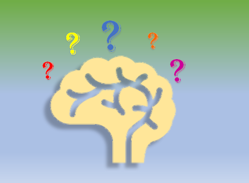 brain bias